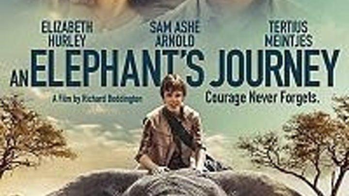 Большое путешествие слона смотреть онлайн, 2017