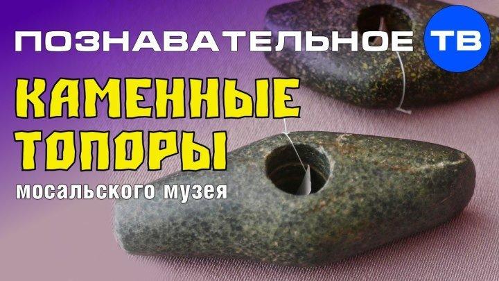 Каменные топоры Мосальского музея (Познавательное ТВ, Артём Войтенков)