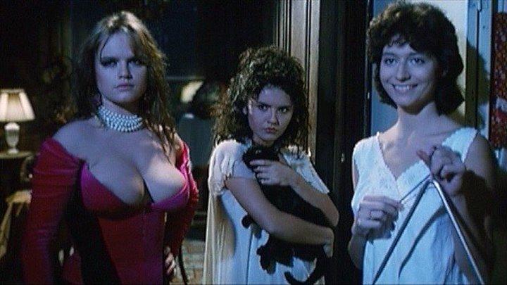 Кровавая стирка (Италия, Франция, Венгрия 1993) 18+ Ужасы, Триллер, Драма