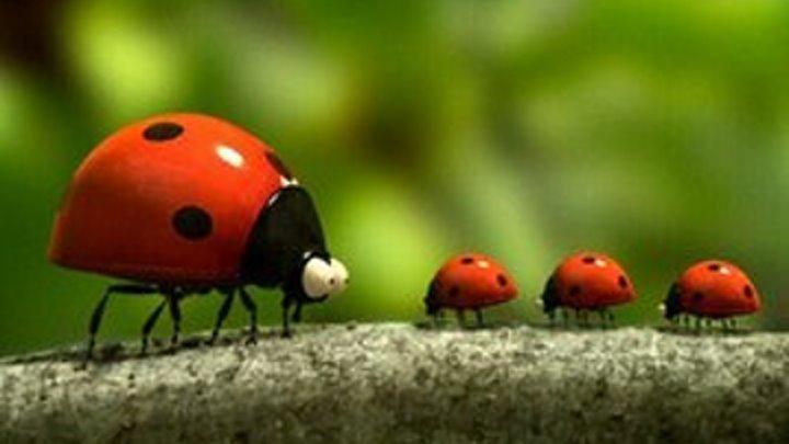 Букашки. Приключение в долине муравьев Мультфильм