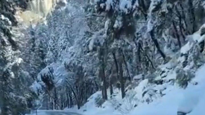 Красота зимней природы в Йосемитском парке