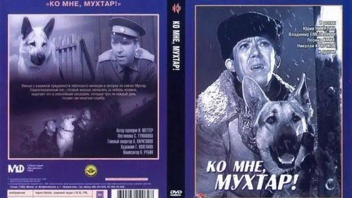 Ко мне, Мухтар! 1964 Россия.Юрий Никулин,.HD