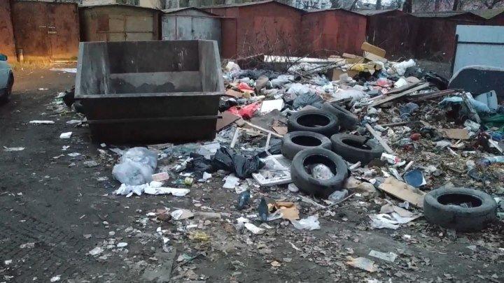«У тебя тут свалка, мама?» – неравнодушный воронежец спас двор от мусорки. ФАН-ТВ