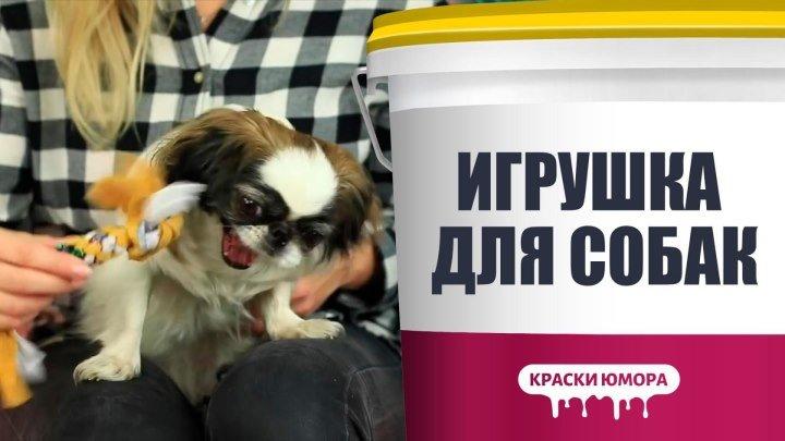 Забава для собаки
