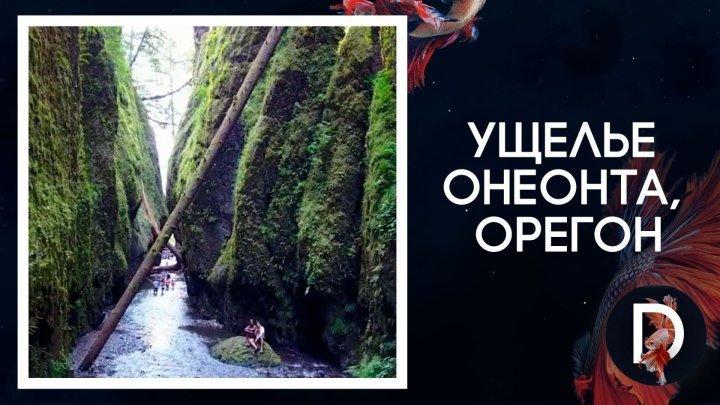Ущелье Онеонта, Орегон, США