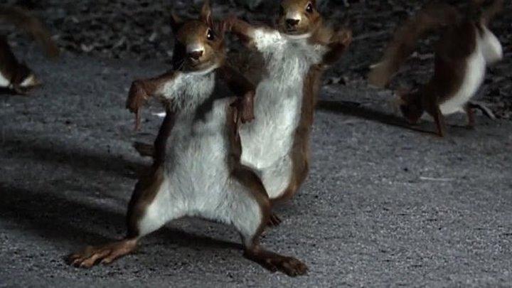 Танцуют животные - Реклама Mercedes Stayin' Alive HD