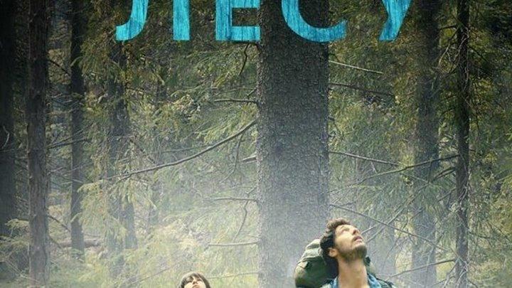 В лес (2016) ужасы, фэнтези, триллер, драма