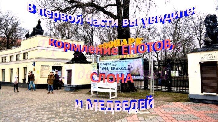 Калининградский ЗООПАРК. Часть 1 (Самое интересное во второй части)