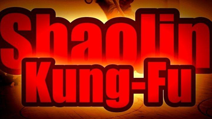 Shaolin. Кунг-фу. Мастер из Китая. Показательные выступления в Школе Цигун и Кунг-фу Шаолиня мастера Ши Янбина.