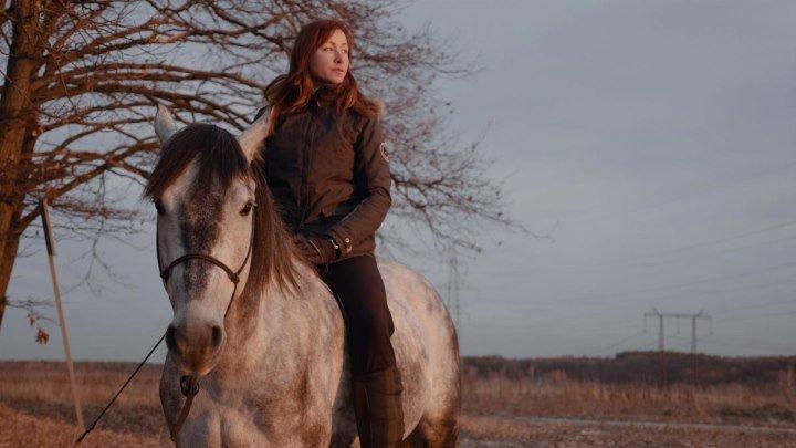 Что если твой питомец – лошадь?