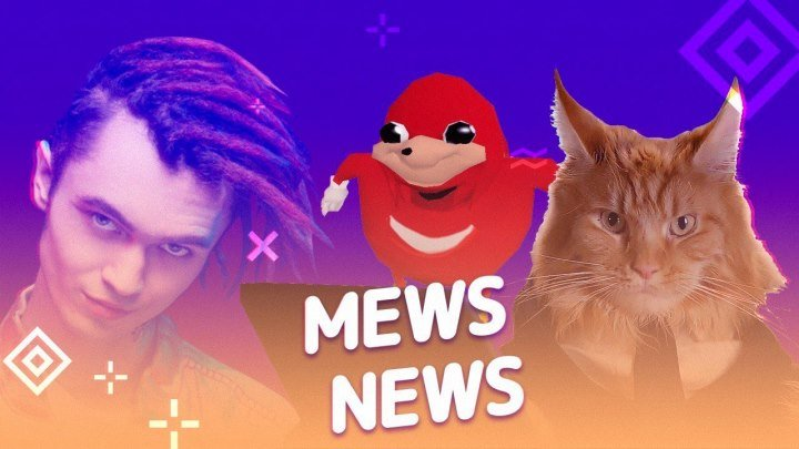 Mews News | Итоги 2018 кота
