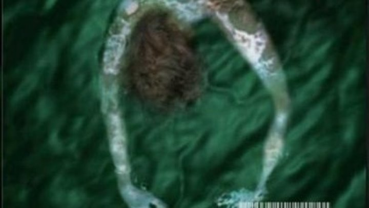 Тёмный лес (2003) ужасы, триллер, детектив, приключения