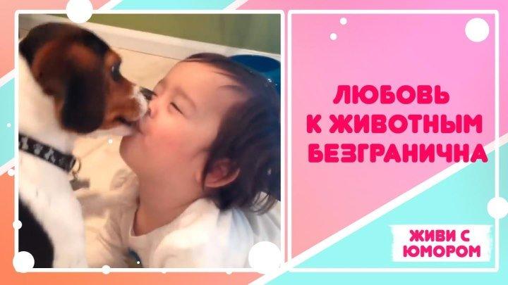 Безграничная любовь к животным