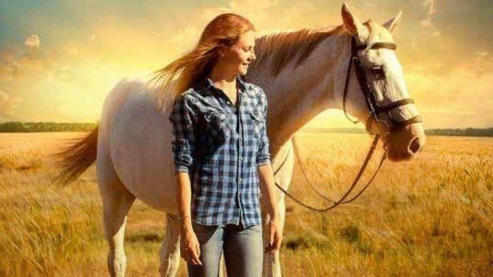 Сиротка / Orphan Horse (2018). драма