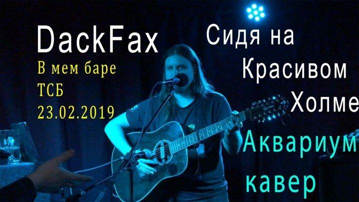 Сидя на красивом холме - Аквариум кавер на гитаре , запись выступления ДакФакса в ТСБ 23.02.2019
