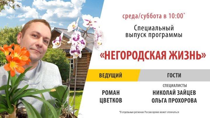 Специальный выпуск программы «Негородская жизнь»