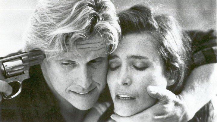 Чужой в доме (триллер с Гэри Бьюзи и Мими Роджерс) | США, 1989