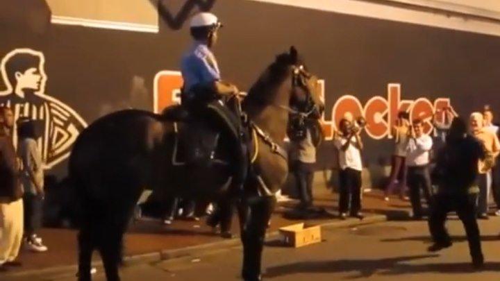 Танцующий конь Тони.