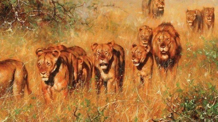 Дикие места Африки. Рожденные выживать Africa's Wild Side (2018). документальный