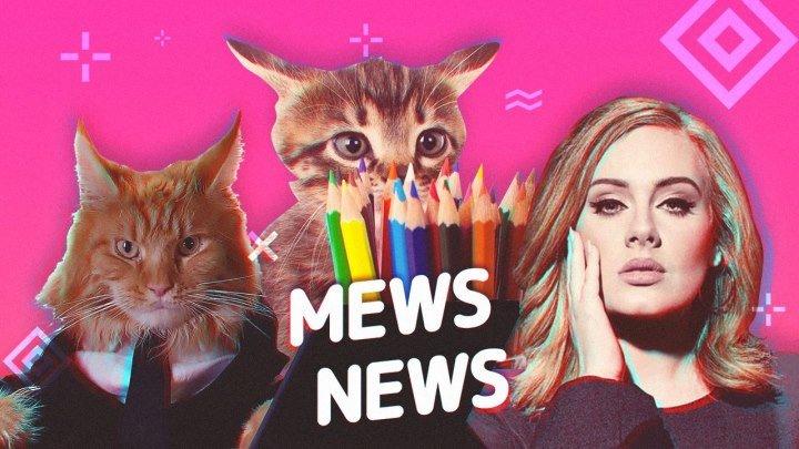 Mews News | Кот-искусствовед