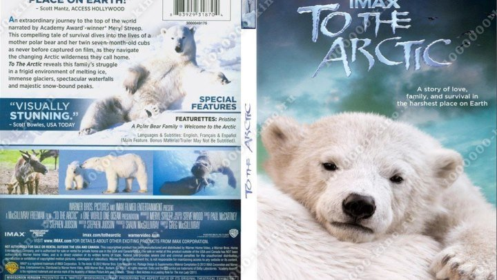 Арктика (2012)