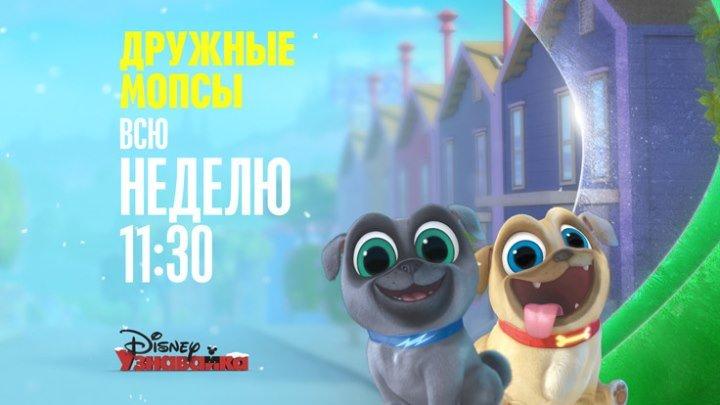 "Мультсериал ""Дружные мопсы"" на Канале Disney"