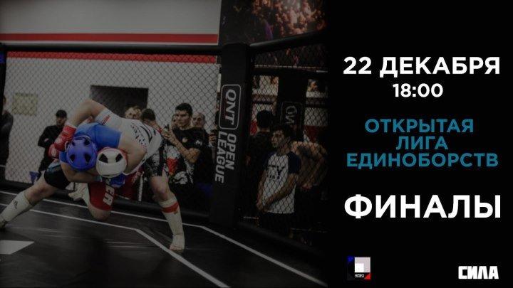 Открытая Лига Единоборств. Финалы (22 декабря 18:00 МСК)