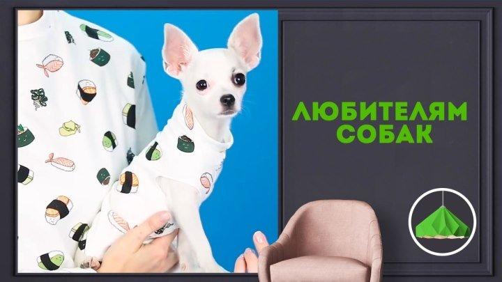 Для владельцев собачек