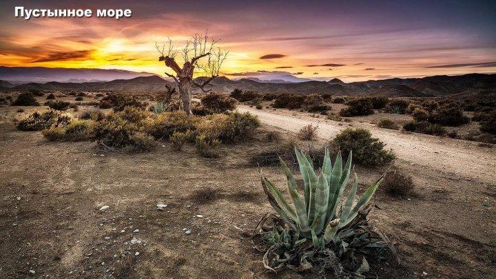 Пустынное море ( 2 серии ) 2016, США ( Документальный ) 1080
