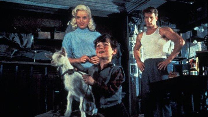 Козлёнок за два гроша (1955) Фэнтези, Трагикомедия, Семейный, Спорт