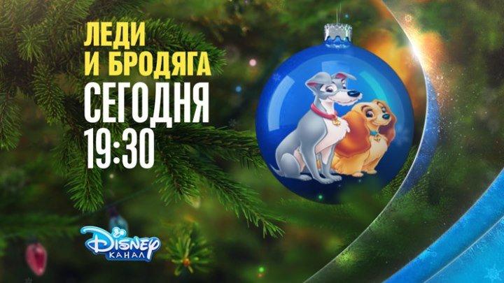 """Анимационный фильм """"Леди и Бродяга"""" на Канале Disney"""