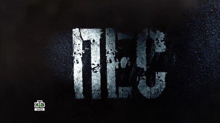 Пес. 1 - сезон. 12 серия из 20