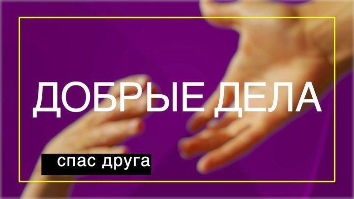 Добрые дела (выпуск 9)