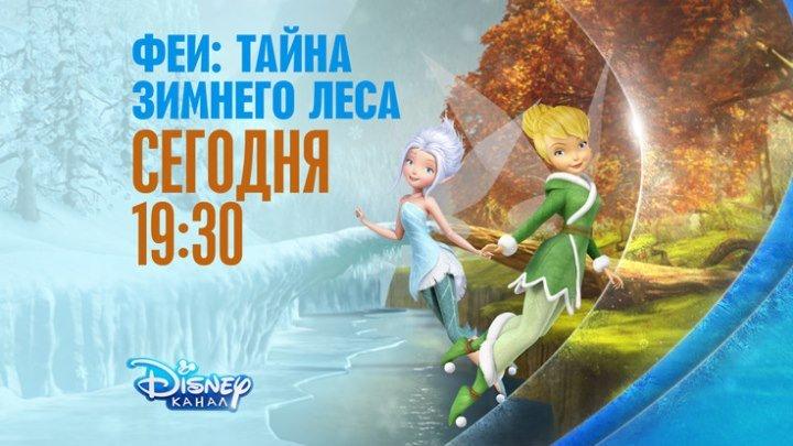 """""""Феи.Тайна зимнего леса"""" на Канале Disney!"""