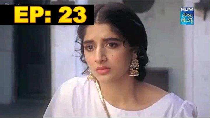Pak Iconic Tv: AANGAN (HUM TV)