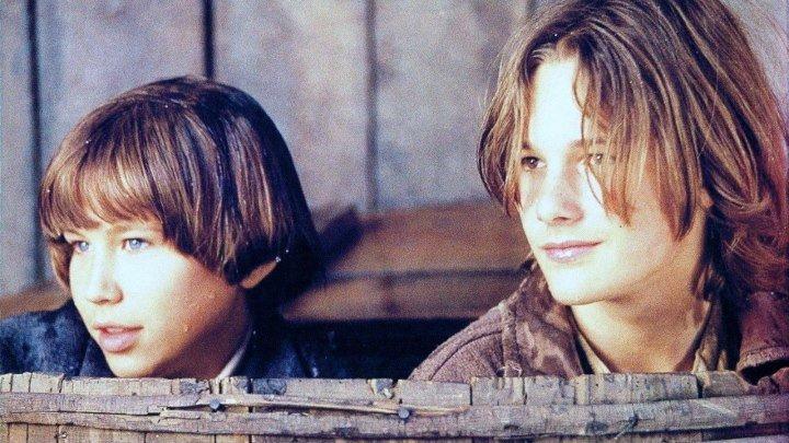 Том и Гек (1995)
