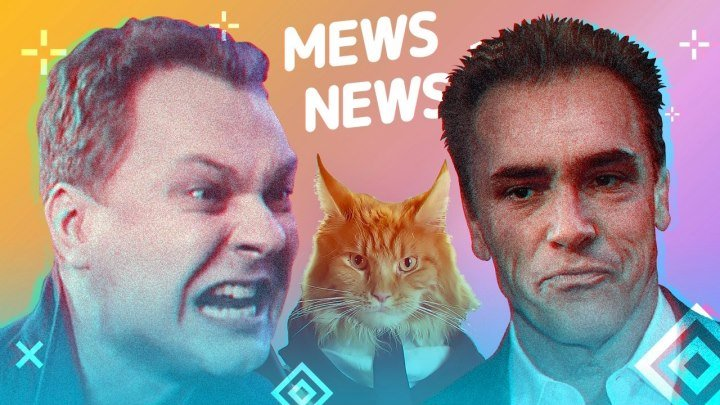 Mews News | Шварцнеггер, Хованский, котобудильник