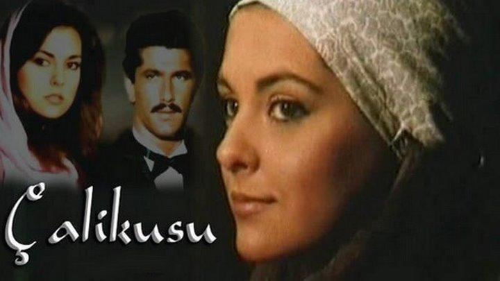 Королёк птичка певчая (1986 г.). 3 серия