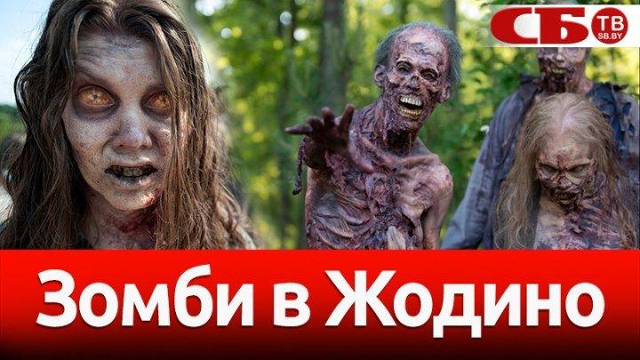Зомби захватили Жодино: как прошел забег Zombie Run