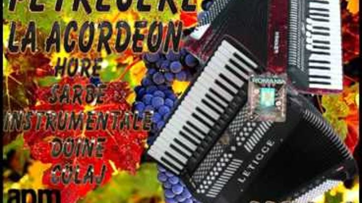 Petrecere La Acordeon Hore Si Sarbe Instrumentale 2016 Colaj De