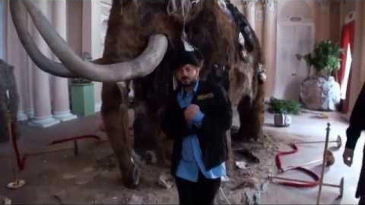 Бородач сериал Трейлер (сезон 1) (дублированный)