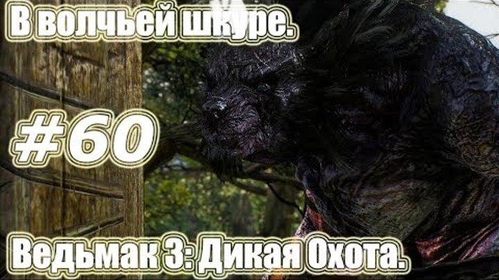 Ведьмак 3: Дикая Охота. Видео прохождение игры. #60 - В волчьей шкуре.