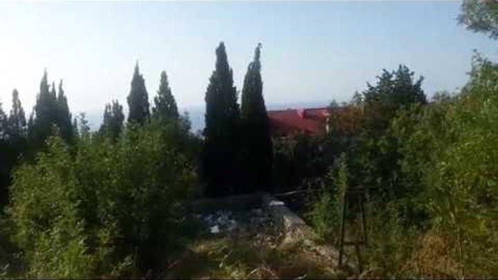 Крым, Ялта, Никитский сад. Земельный участок 10 соток (лот 3-у)... +7-978-015-21-05