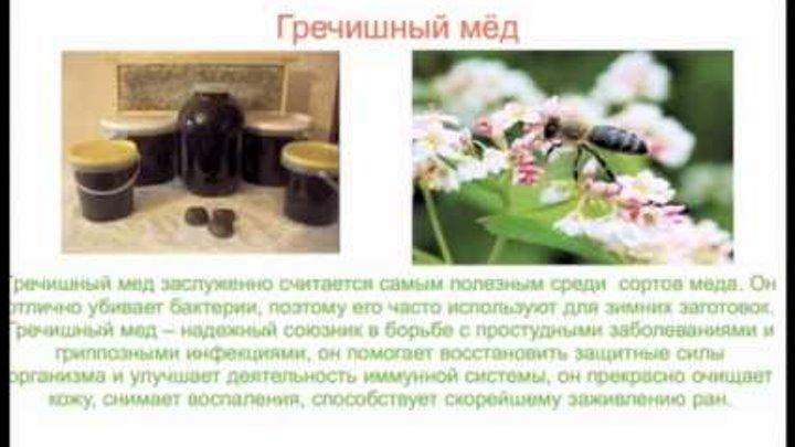 """Исследовательская работа на тему: """"Мёд и его свойства""""."""