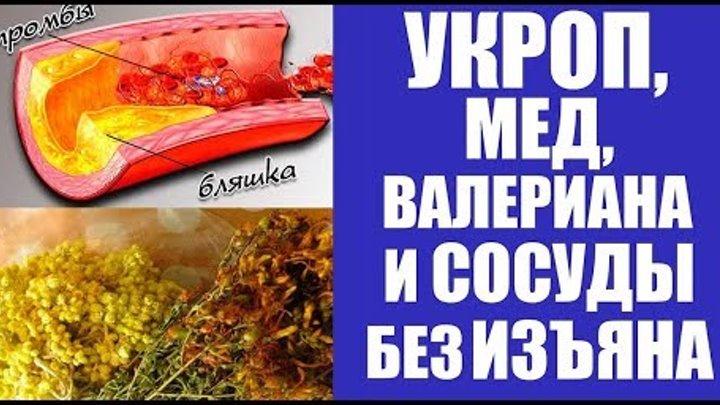 Укроп, мёд, валериана и сосуды без изъяна