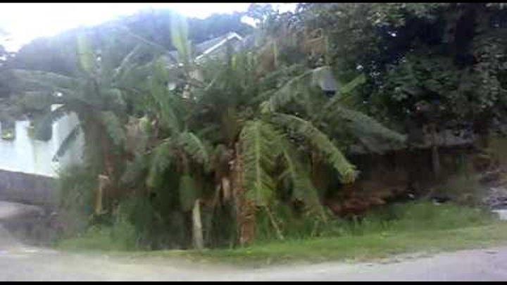 остров Маэ, индийский океан - дорога на работу