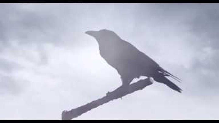 Викинги 6 сезон стартует осенью 2018 года . Смотреть трейлер