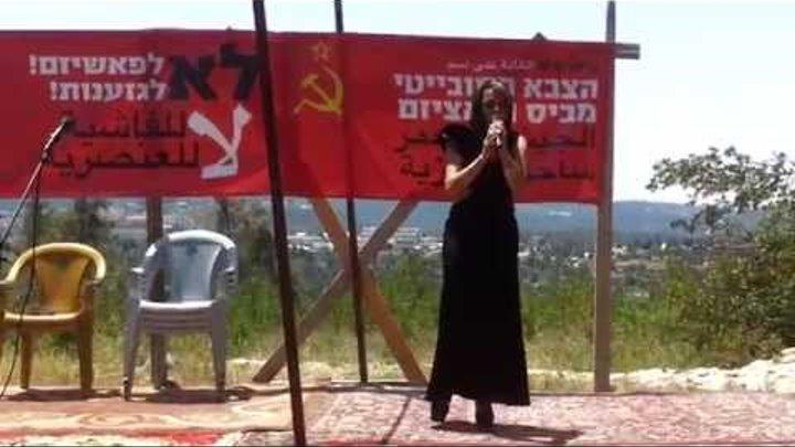 Празднование 9 Мая в лесу им. Советской Армии ,Иерусалим-2015 г ,Концерт,стихи. 2 часть