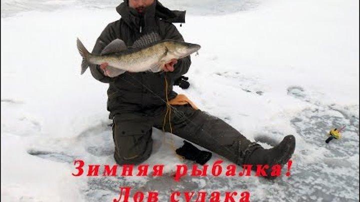 Ловля судака, окуня, щуки на Волге на балансир, видео. Зимняя рыбалка. Хардкор.