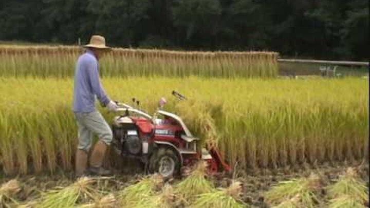 2009 クボタオートバインダーHF50で稲刈り 結束機の仕組み&放置プレー